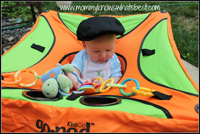 Travel Activity Seat for Babies
