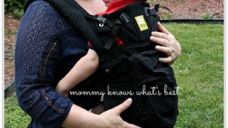 LILLEbaby COMPLETE All Seasons Baby Carrier Review