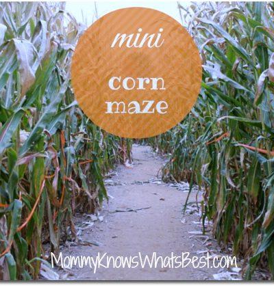 corn maze in pa