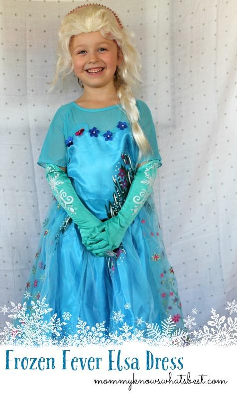 Frozen Fever Elsa Costume Dress