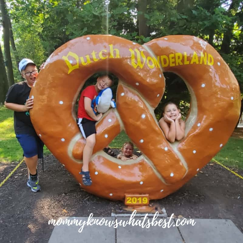 Dutch Wonderland Pretzel