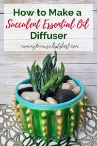 DIY Succulent Essential Oil Diffuser with Lava Stones