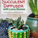 How to Make a Succulent Diffuser with Lava Stones