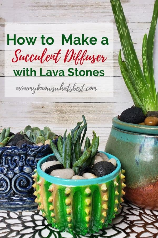How to Make a Succulent Diffuser with Lava Stones: Learn how to make a succulent essential oil diffuser using lava stones.