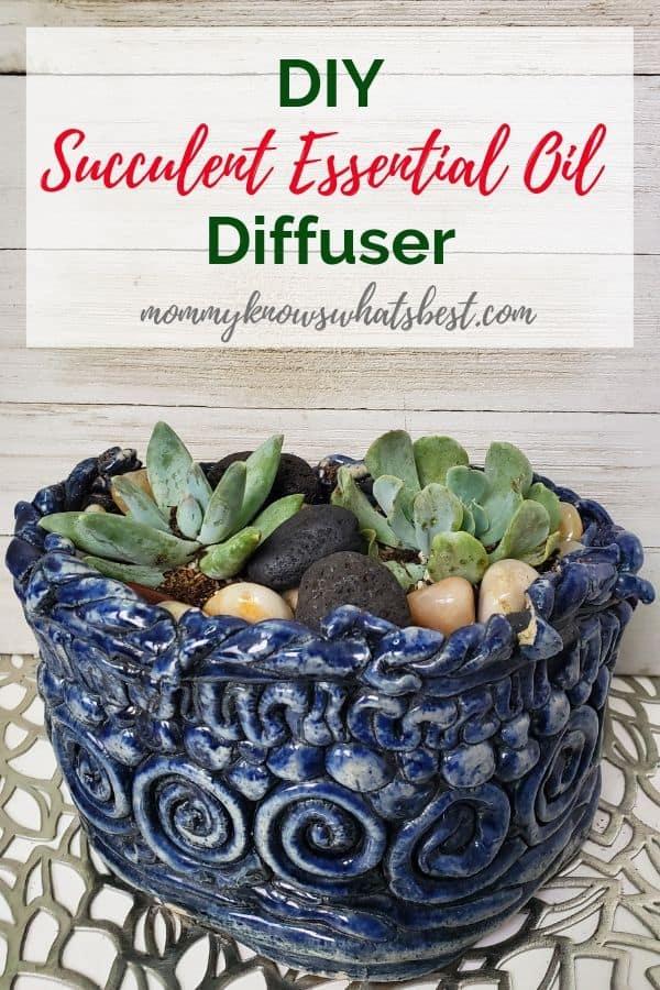 Succulent Diffuser DIY with Lava Stones