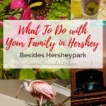 What To Do with Your Family in Hershey Besides Hersheypark
