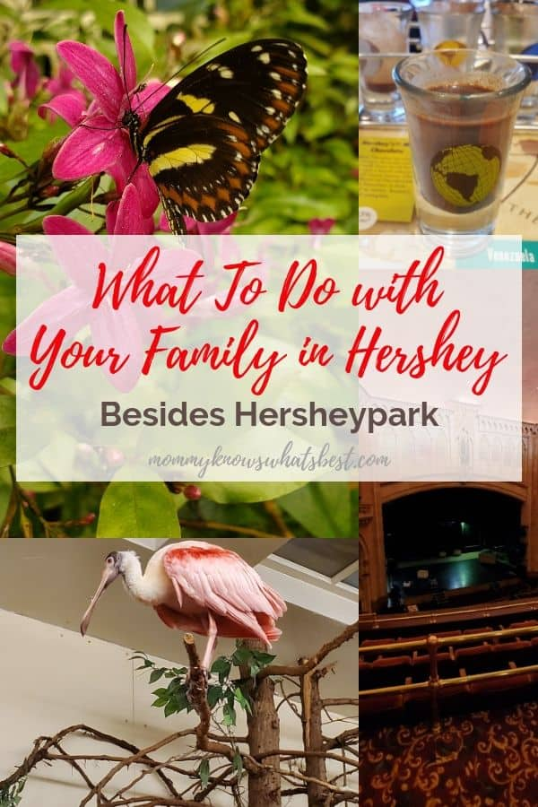 Things to Do in Hershey Besides Hersheypark