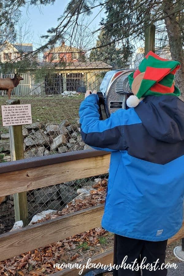 ZooAmerica Animals Hersheypark Christmas Candylane