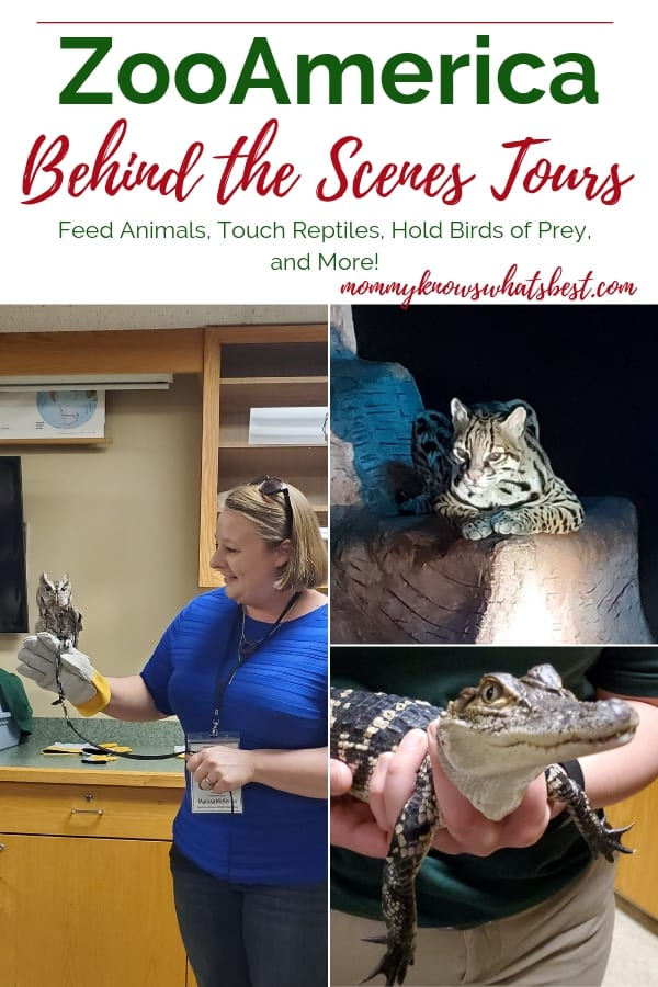 Learn all about the Behind the Scenes Tours at ZooAmerica in Hershey, PA. Find out what animals you can meet, feed, or hold.